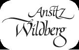 logo-camping-wildberg